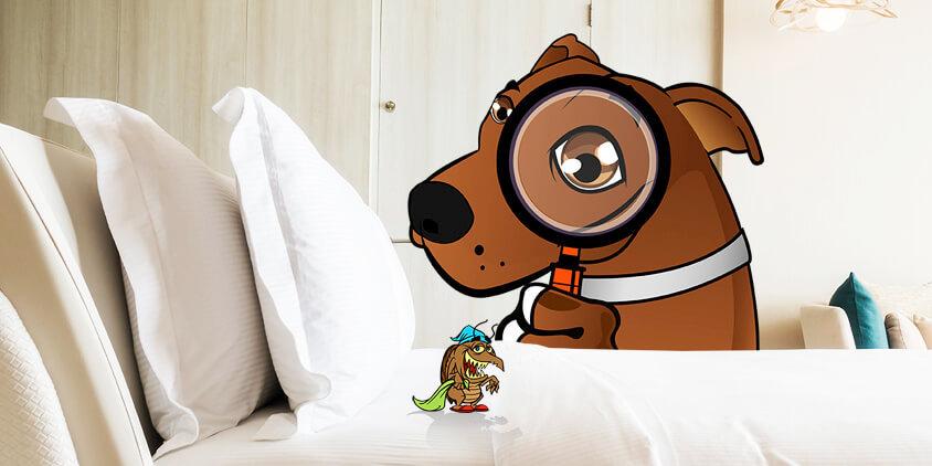 10 consejos para erradicar los ácaros de tu colchón y de tu vida con La Tienda 3B's